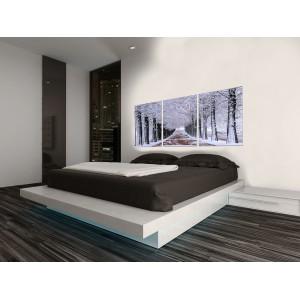 Tableau triptyque photographique en verre Acrylique - Décoration murale paysage hivernal - WINTER