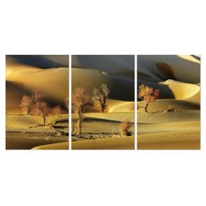 tableau plexiglas verre acrylique d sert de sable triptyque. Black Bedroom Furniture Sets. Home Design Ideas