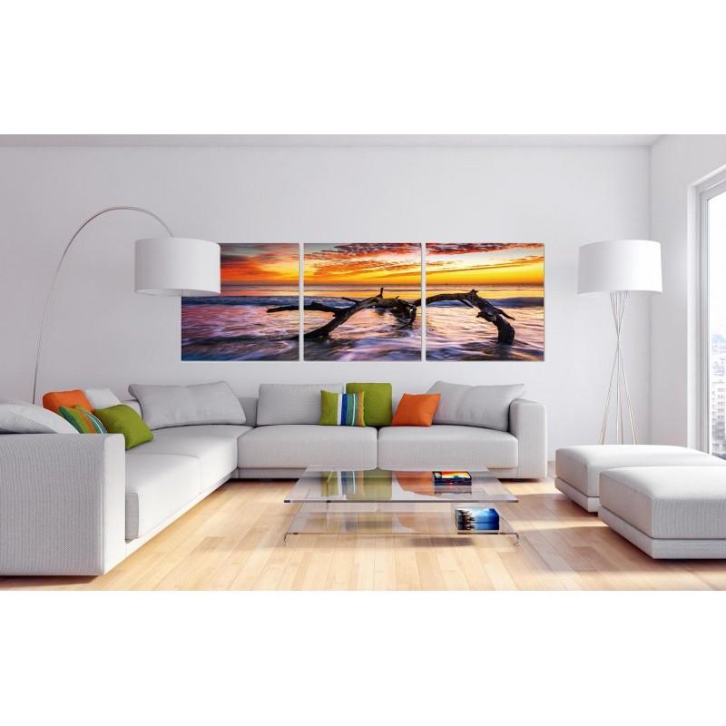Tableau Artistique Photo Murale Triptyque Element